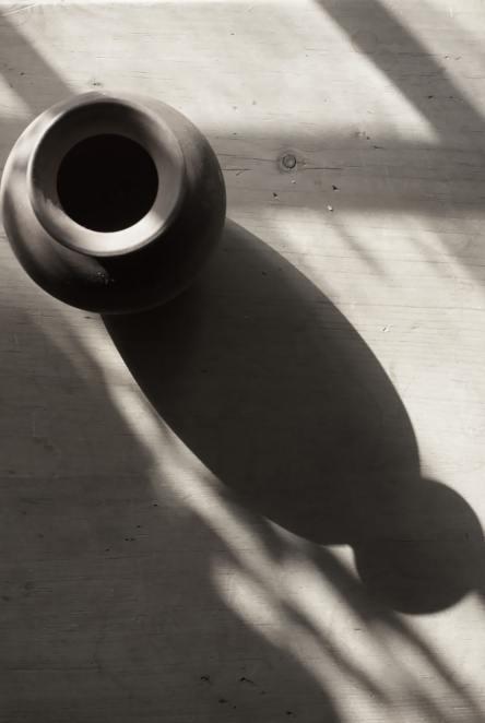 flowers-table-lighting-shadows-3187551