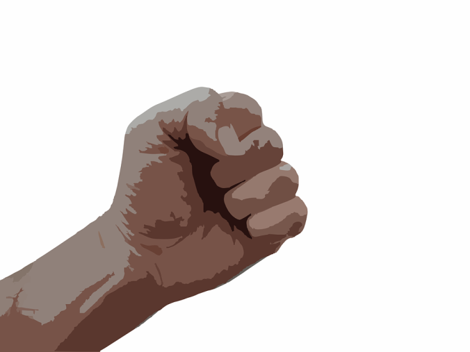 fist-295159_960_720