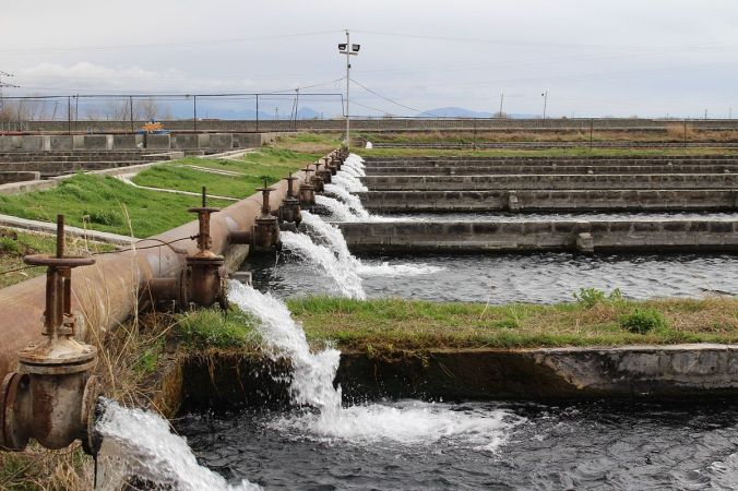 Masis_Dzuk_Fish_Farm_in_Armenia