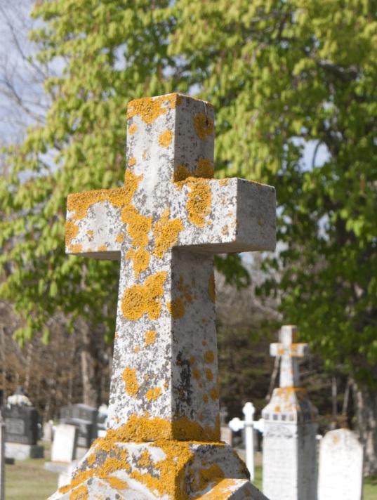 silhouette-1372347-pxhere.com