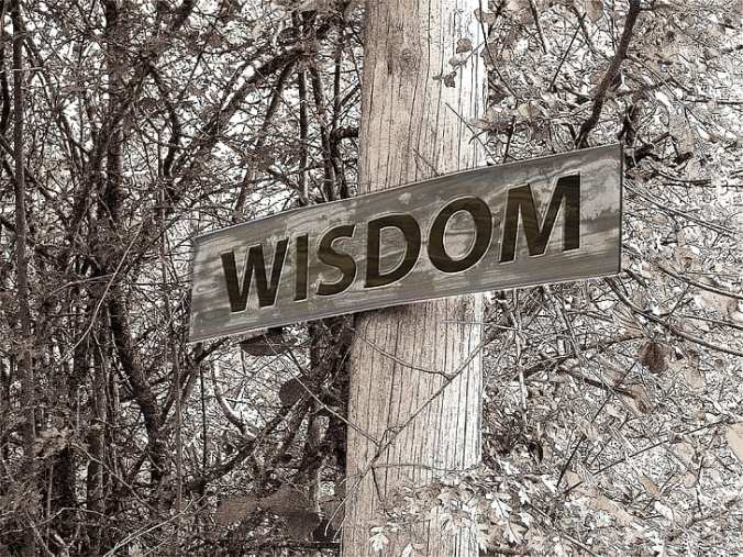 directory-away-wisdom-education-preview
